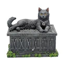 Box Tarocchi con gatto by...
